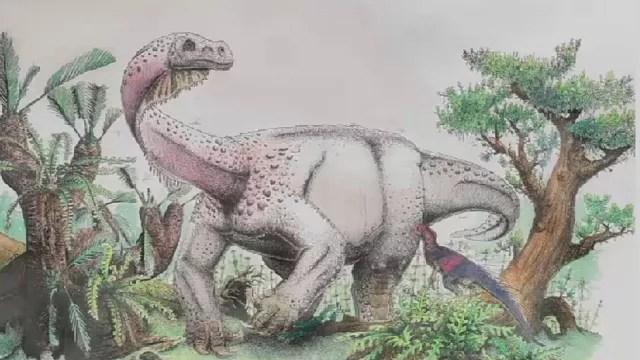 """Résultat de recherche d'images pour """"new dinosaur discovered"""""""