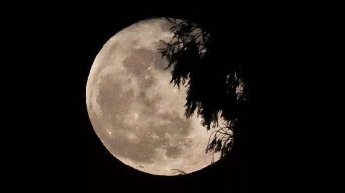 Pleine lune photographiée à Leeuw-Saint-Pierre, Belgique | 20/02/2019
