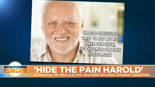 Hide The Pain Harold How A Retired Hungarian Man Reclaimed His