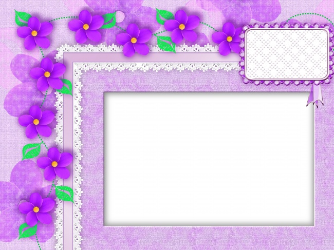 HD Beautiful Fresh Flowers Photo Frame Picture Free Download