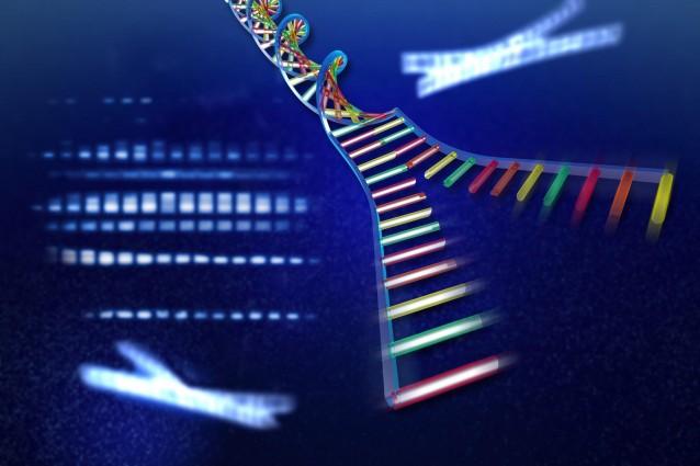 Come usare il DNA per inviare un messaggio nella bottiglia.