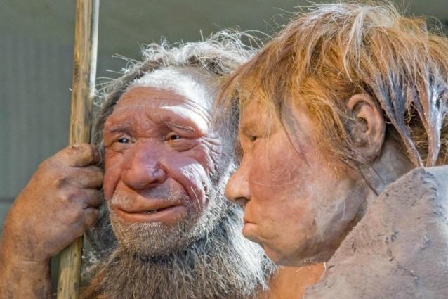 Neanderthal e Sapiens, la prova di un