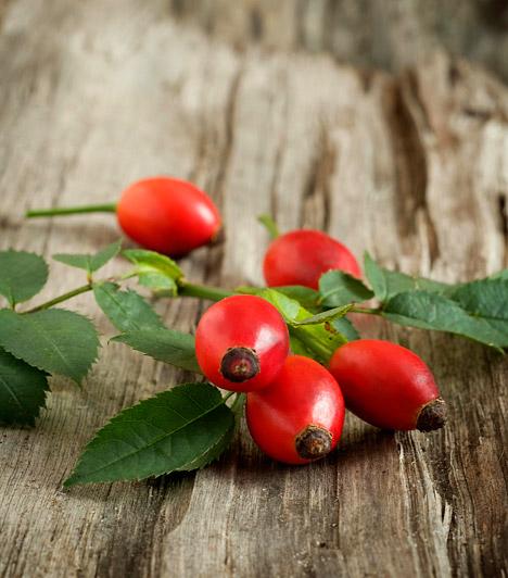 Íme, a legerősebb náthaűző gyógynövények