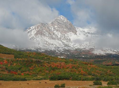 Mt Ogden-Trappers Loop - 09172006-01