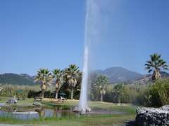 Old Faithful Geyser in Napa Valley
