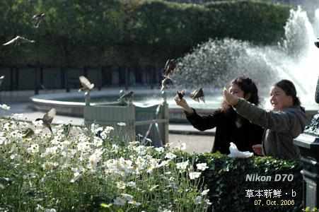 In the Jardin du Palais Royal