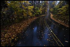 Falling Road