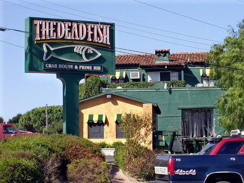 The Dead Fish