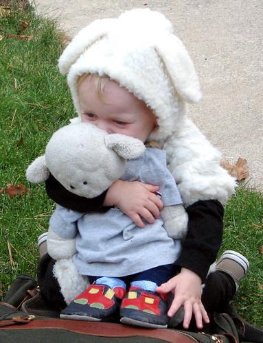 Boy as Sheep, Sheep as Boy (by Brian Sawyer)