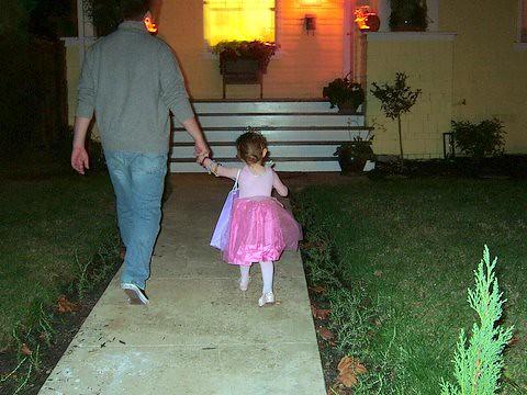 Fairy Princess: Halloween 2005