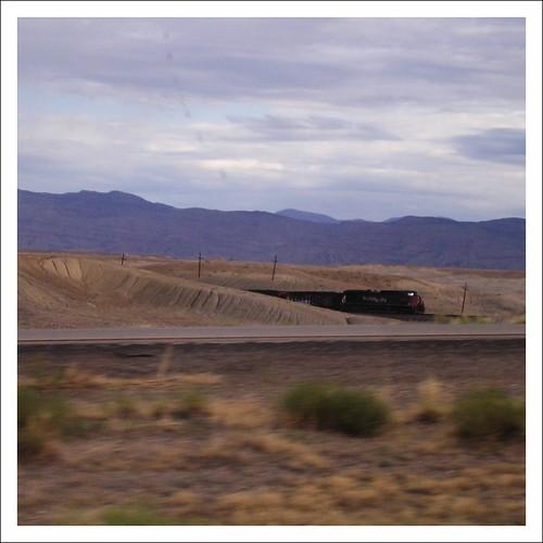 look, a train!