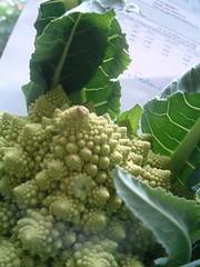 Fractal cauliflower