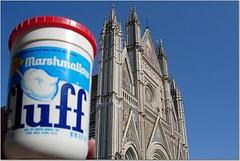 Fluff and Duomo in Orvieto