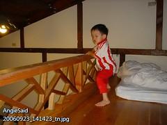 大福巴在樓上的欄杆邊玩耍,一開始我們心驚肉跳,後來也就習慣了。