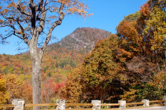 Fall Panorama - Satulah Mountain