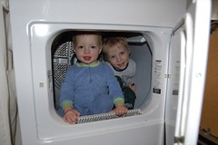 In the Dryer