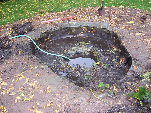 Removing the pond