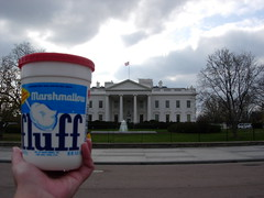 Fluff and the White House