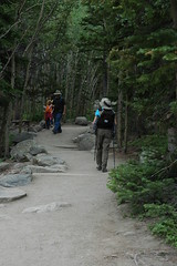 The trail to Alberta Falls