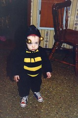 Sean the unhappy Hallowe'en bee