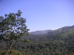Brahmagiri 063