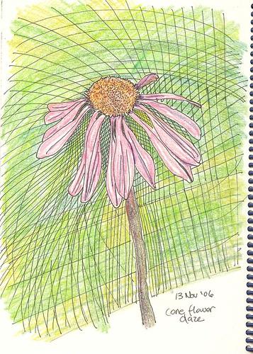 cone flower daze