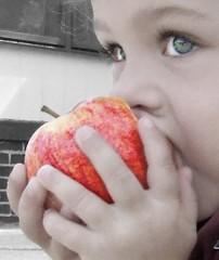 Apple of My Eye (by sarahmichelef)
