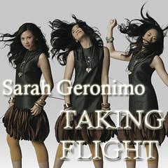 Taking Flight (Temp Album Art)
