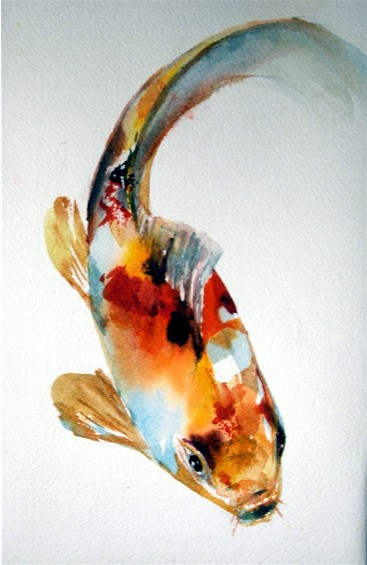 tropical Koi