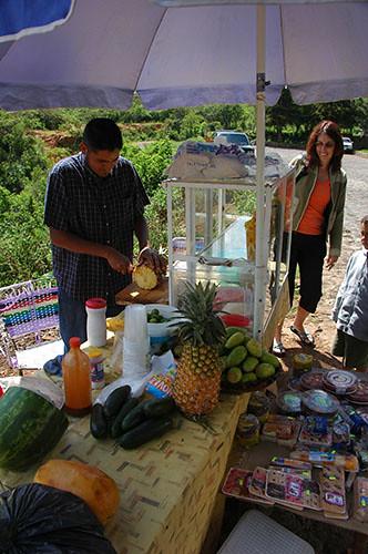 Tzintzuntzan - 11 Waiting for fruits