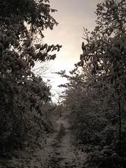 Nov_Dec_2006 069