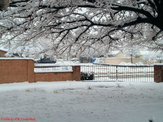 My Snowy Front Yard