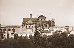 La Mezquita Catedral