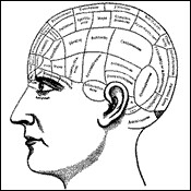 Cognició