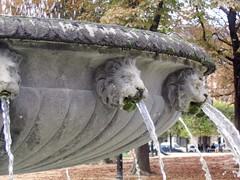 Photo of detail on a fountain in Place des Vosges