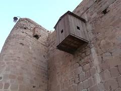 Sinai - Monast Ste Catherine 06