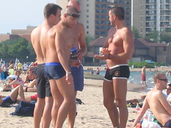 Beach Studs