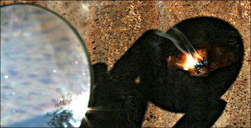 Cahaya matahari yang difokuskan bisa membakar