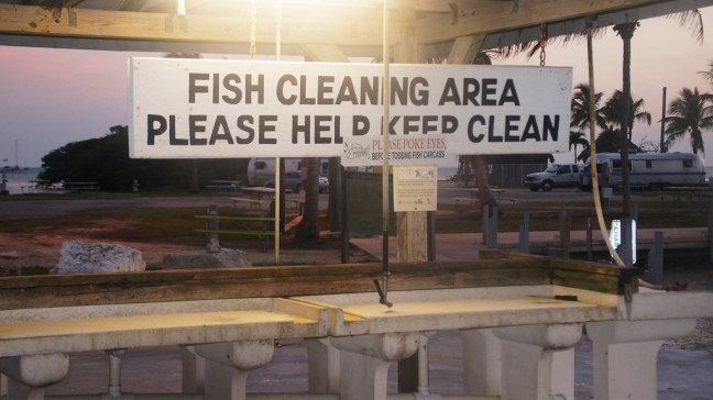 Fish Cleaning at Knight's Key