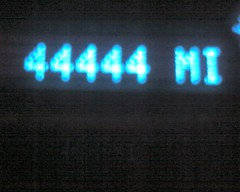 img480.jpg