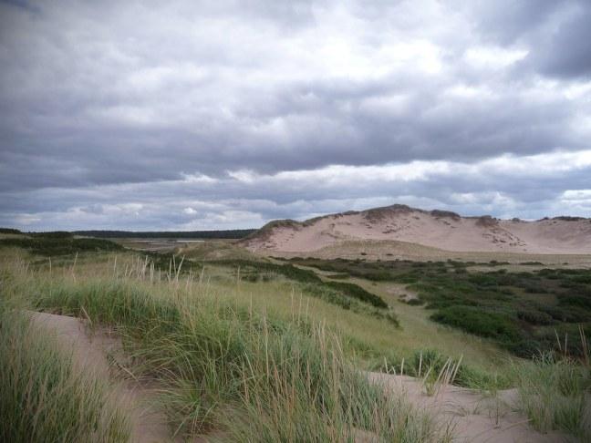 Greenwich Dunes