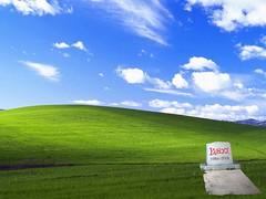 Microsoft a por Yahoo