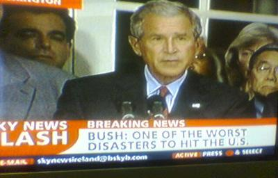 Bush disaster