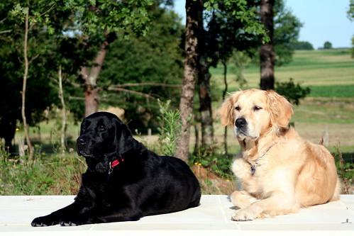 Eiko and Valéas