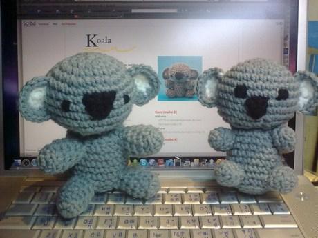 Twin Koala
