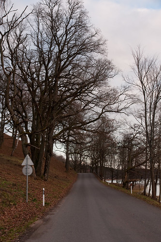 Kelias į Dubingius