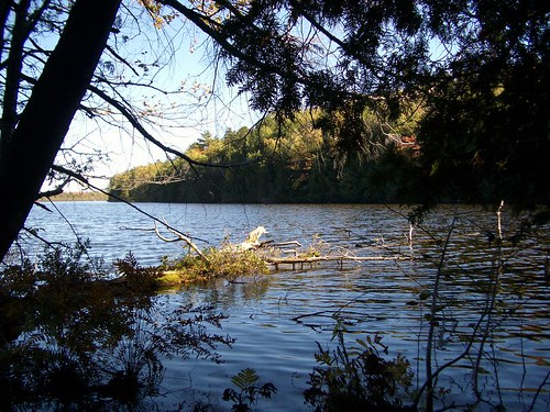 Little Brevort Lake photo