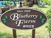 Blueberry Farm OKAZAKI