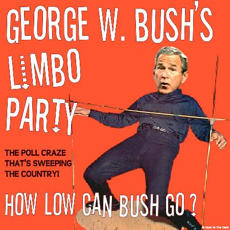 Bush Limbo Image