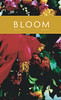 Bloom 4 - Queer Fiction, Art, Poetry, and More
